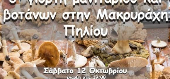 3η γιορτή μανιταριού και βοτάνων στη Μακρυράχη